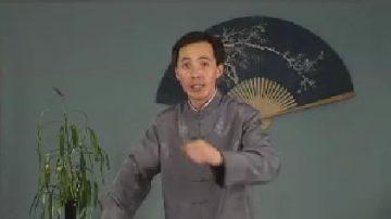 评书:岳飞传(187)