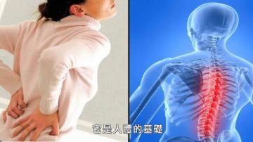 【走近韩医】身体的支柱 – 脊椎