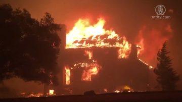 【湾区聚焦】关注北加野火 房屋保险助你重建家园
