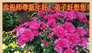 来自四十个行业的大陆大法弟子恭祝李洪志大师新年好