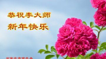 明真相 大陆百姓恭祝李洪志大师新年好