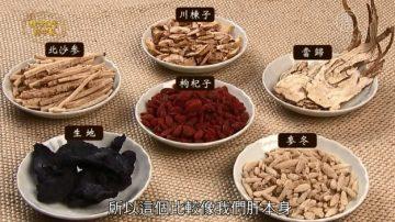 谈古论今话中医:春季护肝好生活