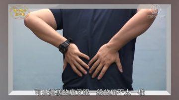 谈古论今话中医:僵直性脊椎炎 中医治疗有法宝