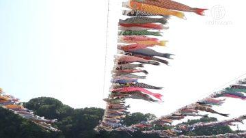 【日本你好】日本鲤鱼旗