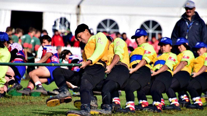 世界杯拔河锦标赛 台夺6金1铜打平上届纪录