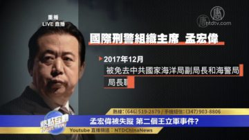 【热点互动】孟宏伟被失踪 第二个王立军事件?