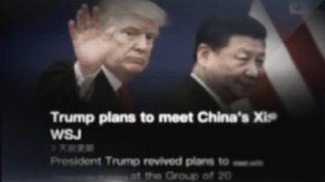 【微視頻】G20川普與習近平會談與否要看談判結果