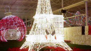 玩转兰里圣诞灯展 饱览六国之光