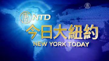 【今日大紐約】11月24日完整版