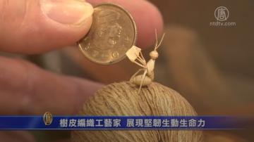 樹皮編織工藝家 展現堅韌生動生命力