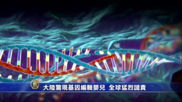 大陸驚現基因編輯嬰兒  全球猛烈譴責