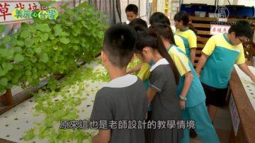 美麗心台灣:生態校園營造自然環境 多元教材樂趣多