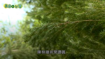 美麗心台灣:保種復育 陳林瑭堅持回歸天然