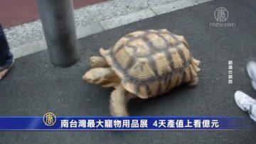 南台灣最大寵物用品展 4天產值上看億元