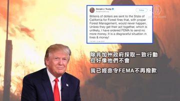 再批加州森林管理不當 川普撤銷聯邦撥款