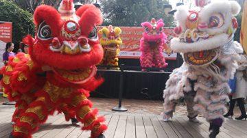 硅谷華人新年慶典現人潮 爭睹民俗文化