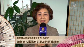 纽约华人家长会理事会主席朱宝玲拜年