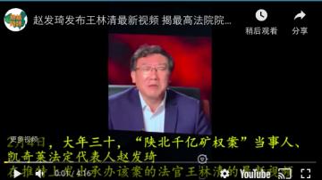 王林清最新視頻 揭周強關係網 牽出副國級高官