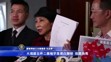 大灣區規劃涵香港 民主派憂「一國兩制」