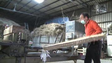 台灣榻榻米工廠 承襲傳統物盡所用