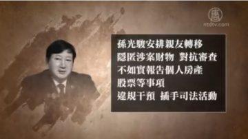 武漢原檢察長被雙開 罪同河北政法王