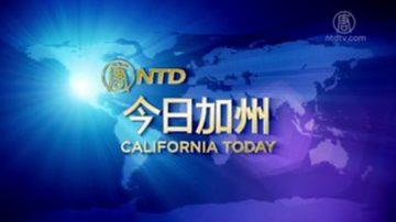 【今日加州】3月12日完整版