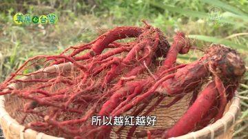 美麗心台灣:女青農與泥巴共舞 推展有機丹蔘