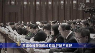 【禁聞】政協委員吁建網絡特區 評論不看好